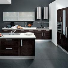 Contemporary Kitchen by Euro Interior California