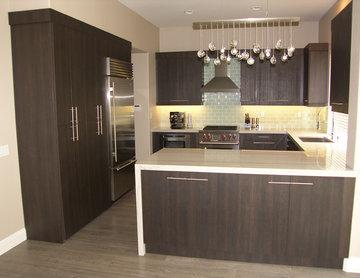Euro Modern Kitchen Remodel Refacing