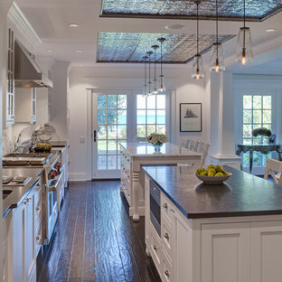 Inspiration for a timeless kitchen remodel in Chicago with stainless steel appliances