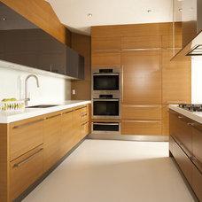 Modern Kitchen by Meister Construction Ltd