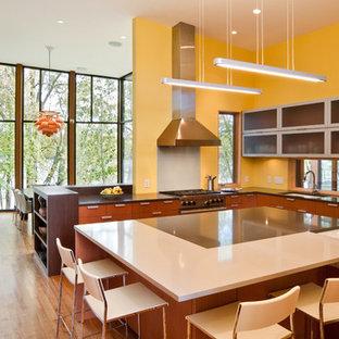 Ispirazione per una cucina minimalista con lavello sottopiano, ante lisce e ante in legno scuro