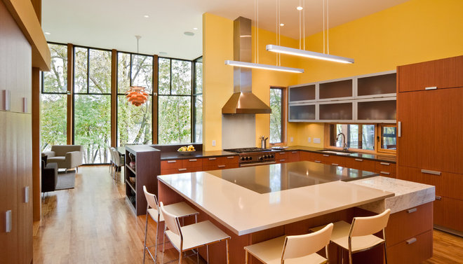 Modern Kitchen by ALTUS Architecture + Design