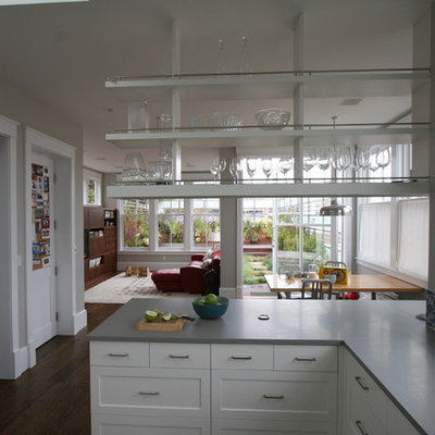 Kitchen - transitional kitchen idea in San Francisco with open cabinets