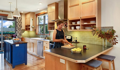 Houzz Tour: A High-Performance Craftsman Home With Modern Touches