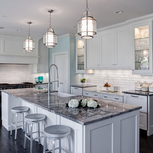 Traditional kitchen pictures - Kitchen - traditional kitchen idea in Chicago with a farmhouse sink