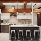 Modern Mix Contemporary Kitchen Dc Metro By Konst