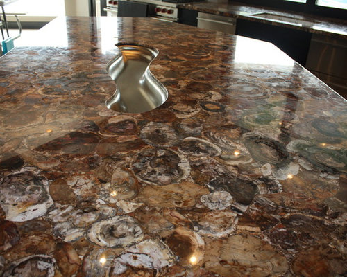 Petrified Wood Countertop Houzz