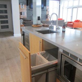トロントの大きいモダンスタイルのおしゃれなキッチン (フラットパネル扉のキャビネット、白いキッチンパネル、ガラス板のキッチンパネル、シルバーの調理設備、無垢フローリング、シングルシンク、中間色木目調キャビネット、コンクリートカウンター) の写真
