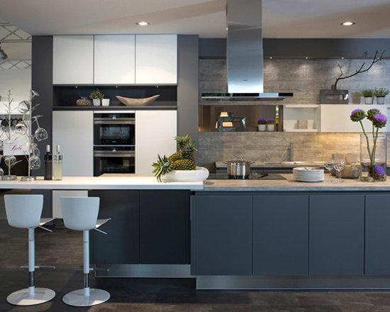 german kitchen cabinet | houzz