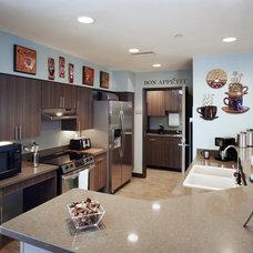 Contemporary Kitchen by Rachel Paul