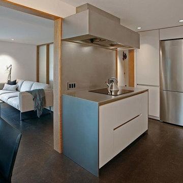 Greenlake Modern Kitchen