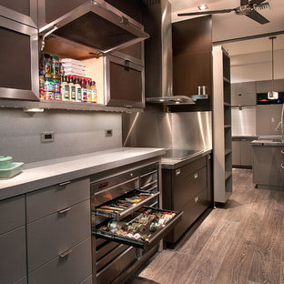 Kitchen - contemporary galley dark wood floor kitchen idea in Orlando with a double-bowl sink, flat-panel cabinets, gray cabinets, gray backsplash, stainless steel appliances and no island