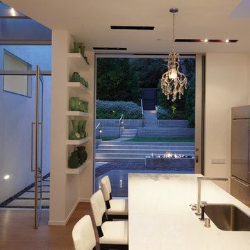 GRIFFIN ENRIGHT ARCHITECTS: Santa Monica Canyon Residence
