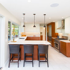 Contemporary Kitchen by Cindy Ross Interior Design