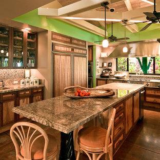 Idee per una cucina tropicale chiusa con ante di vetro, ante in legno scuro e elettrodomestici da incasso