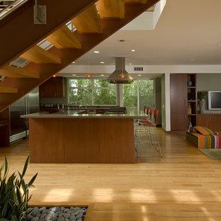 Пример оригинального дизайна: кухня в современном стиле с техникой из нержавеющей стали