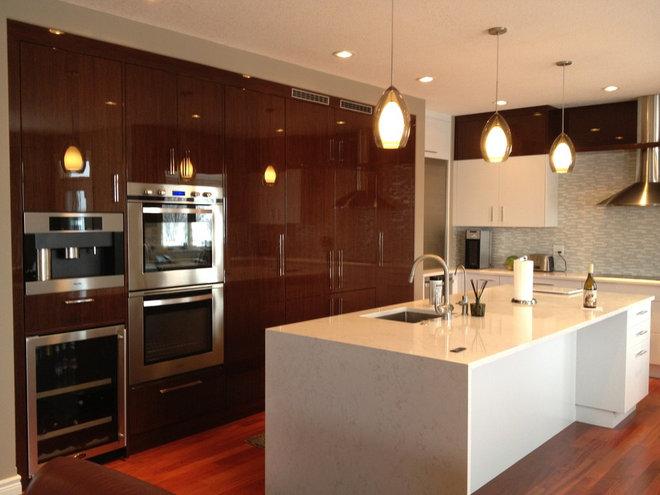 Contemporary Kitchen by Fran Hughston - Redl Kitchens