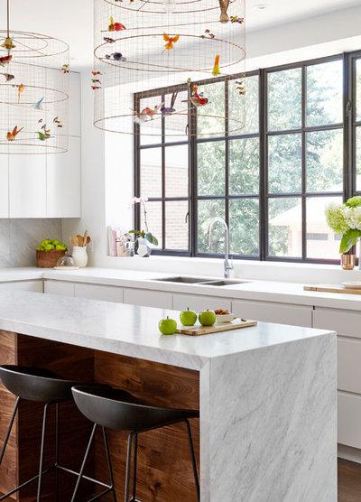 Transitional Kitchen by Designtheory Inc.