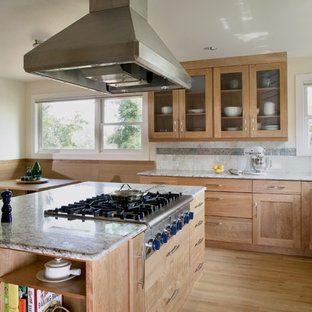 Kitchen - contemporary kitchen idea in Denver with glass-front cabinets