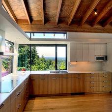 Industrial Kitchen by Renzo J Nakata Architects