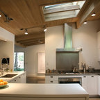 Alexander Twin Palms Midcentury Kitchen Los Angeles