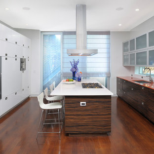 This is an example of a contemporary galley kitchen in Chicago with an undermount sink, flat-panel cabinets, dark wood cabinets, window splashback, stainless steel appliances, dark hardwood floors, with island, brown floor and orange benchtop.