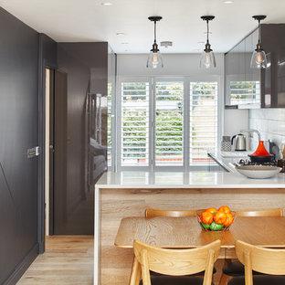 Источник вдохновения для домашнего уюта: маленькая угловая кухня в современном стиле с врезной раковиной, плоскими фасадами, серыми фасадами, светлым паркетным полом и бежевым полом без острова