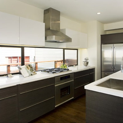 Minimalist kitchen photo in Other with stainless steel appliances