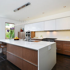 Contemporary Kitchen by Dresner Design | Chicago Custom Kitchens Cabinets