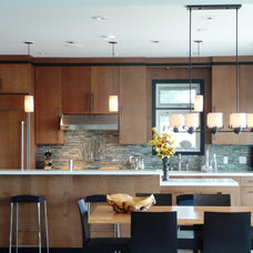 modern kitchen by Terri Wills, Dip. Building Technology