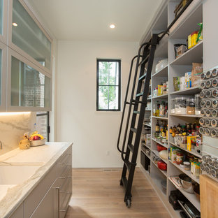 Transitional kitchen pantry inspiration - Transitional galley light wood floor and beige floor kitchen pantry photo in Other with an undermount sink, flat-panel cabinets, gray cabinets, white backsplash and white countertops