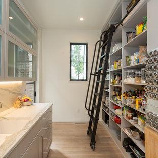 75 Galley Kitchen Pantry Design Ideas - Stylish Galley Kitchen ...