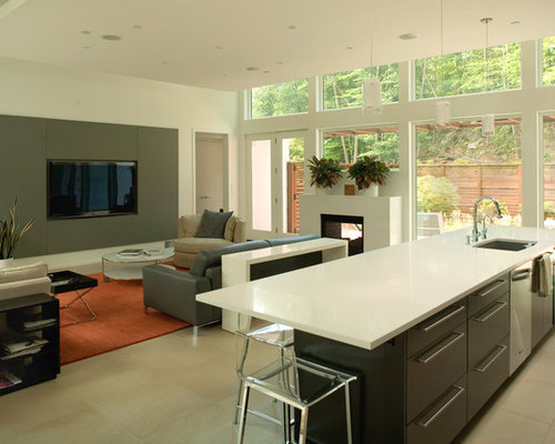 Kitchen Living Room Combo Home Design Ideas Pictures Remodel And Decor