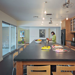 modern kitchen by Ira Frazin Architect