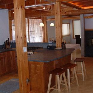 バーリントンの中サイズのアジアンスタイルのおしゃれなキッチン (アンダーカウンターシンク、シェーカースタイル扉のキャビネット、淡色木目調キャビネット、ソープストーンカウンター、緑のキッチンパネル、石スラブのキッチンパネル、シルバーの調理設備の、竹フローリング、マルチカラーの床、緑のキッチンカウンター) の写真