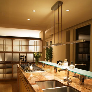 Design ideas for a contemporary kitchen in San Francisco with a double-bowl sink.