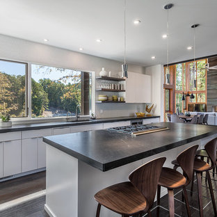 Contemporary kitchen ideas - Inspiration for a contemporary dark wood floor and brown floor kitchen remodel in Other with an undermount sink, flat-panel cabinets, white cabinets, window backsplash, an island and soapstone countertops
