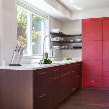 Kirkland Condo Remodel- Phase 2- Kitchen