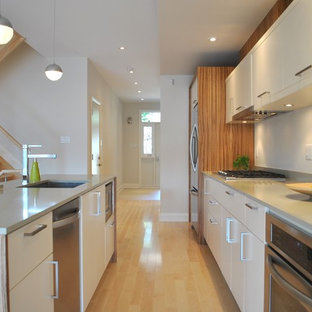 Kitchen - modern galley kitchen idea in Ottawa with stainless steel appliances, quartz countertops, a single-bowl sink, flat-panel cabinets and white cabinets