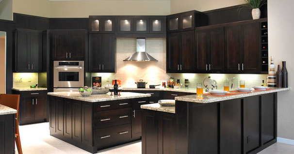 Contemporary Kitchen by Kitchen Designs and More