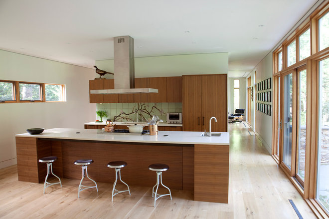 contemporary kitchen by Actual Size Projects