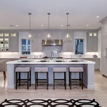 Kitchen & Bathroom Remodel (transitional) - Rockville MD