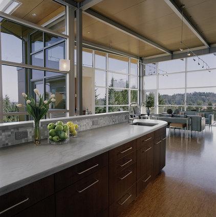 Contemporary Kitchen by Giulietti Schouten Architects