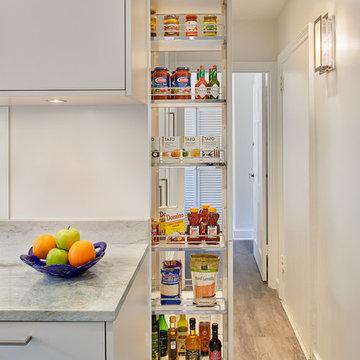 Kitchen and Powder Room Remodel, Washington, DC