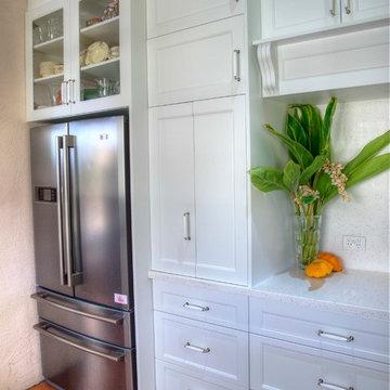 Kitchen Appliance Cupboard and fridge