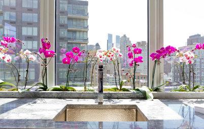 Comment entretenir une orchidée en hiver ?