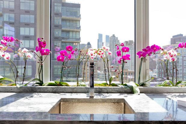 Comment Entretenir Une Orchidee En Hiver