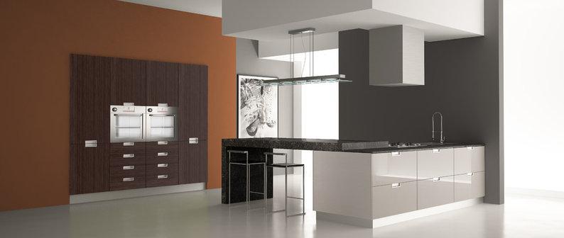 The Kitchen Showcase Inc Project Photos Reviews Centennial Co Us Houzz