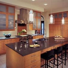 Contemporary Kitchen by Kitchen Distributors