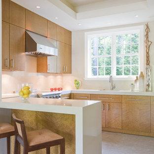 Birdseye Maple Cabinets Houzz